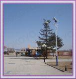 Sans entretien 6m avec des feux de route solaire 42W LED (KY-SR07)