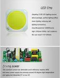 LED de luz LED de luz vía bombilla LED