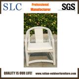 熱い販売の屋外の総合的な柳細工の藤の家具(SC-B8958)