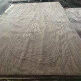 Placage de qualité AA Quart de placage de chêne rouge à bas prix