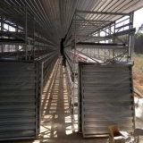 絶縁された自動化された肉焼き器または層の鶏の倉庫の農場