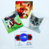 La Cina Factory Produce 3D pp Lenticular Coaster