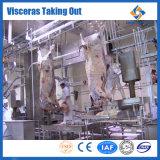 Оборудование для обработки мяса механизма коровы убоя скота оборудования