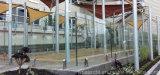 Railing балюстрады Commerical высокого качества стеклянный/стеклянных для торгового центра