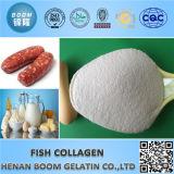 Calidad cosmética colágeno de los pescados para blanquear , Reparación , hidratante como Cuidado de la piel