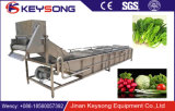 SUS304leafの山東の製造業者からの野菜泡洗濯機