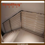 Escalier en terrasse en acier inoxydable Barre à main