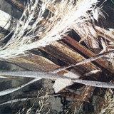 144f/2/1 Impreso de sarga de algodón y poliéster de prendas de vestir y forro de tejido