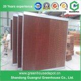 Rilievo di raffreddamento per evaporazione della serra/rilievo/cortina d'acqua bagnati da vendere