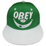 Изготовленный на заказ бейсбольная кепка Snapback с славным логосом Gjfp17161