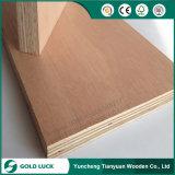 madeira compensada comercial de 1220*2440mm Okoume/Bintangor para empacotar