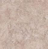 60X60 de cm Geweven Tegels van de Vloer van het Porselein van het Ontwerp (E6012)