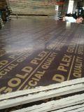 Premium&Nbsp; Quality&Nbsp; Film&Nbsp; Faced&Nbsp; Classe do AAA da madeira compensada para Shuttering