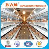 Gabbia del pollo di strato della batteria di alta qualità di basso costo