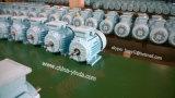 Moteur Y2 triphasé : Bâti Tru-Métrique de fer de moulage du CEI - Tefc (IP55) -