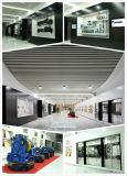Passenger Elevator/Passenger Lift/Elevator/Elevator Lift/