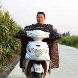 Vento luvas à prova de água casacos para motos e bicicletas eléctricas
