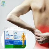 Correcciones chinas vendedoras calientes de la relevación de dolor para el dolor de carrocería