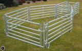 Panneau de triage de chèvre Portable galvanisé pour la vente (XMR107)