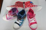 De Schoenen van het canvas met Mooie en Kleurrijke Druk
