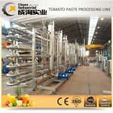 Sauce tomate de ligne de production