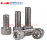 Estruendo Standarded 304/316 tornillo de socket hexagonal