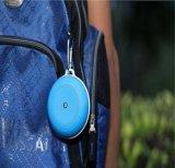 FM 라디오를 가진 스포츠 저음 스피커 스피커 저가 진동 Bluetooth 스피커