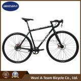 700c Sscx 벨트 구동기 자전거 /Crmoly 단 하나 속도 자전거 (CX3)