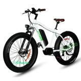 넓은 타이어 눈 자전거 바닷가 자전거를 가진 전기 자전거