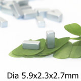 Nickel, das ausgezeichnete Quanity Befestigungsteil-Magnet-Größe 5.9X2.3X2.7mm beschichtet