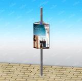 Disegno personalizzato che fa pubblicità al contenitore chiaro di alberino della lampada