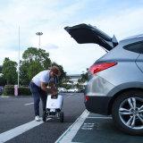 Motorino pieghevole elettrico di mobilità per i handicappati con il certificato del Ce