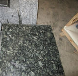 Mattonelle di pavimentazione Polished verdi del granito che murano le nuove mattonelle della lastra del granito di verde della farfalla delle mattonelle