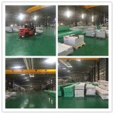 Lexan 공장 가격 Foshan 제조자 4 벽 폴리탄산염 구렁 장