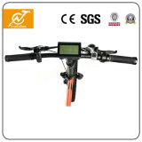 販売のための電気バイク/Bicycleを折る36V 250Wの脂肪質のタイヤ