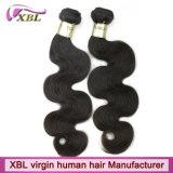 Xblの工場卸売の等級10A未加工Brazillianの人間の毛髪