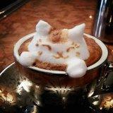 Cappuccino-schäumender Nichtmilchkaffee-Rahmtopf, Halal, sauberes Puder