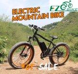 Bici grande eléctrica, bici eléctrica de la potencia de la nieve gorda del neumático