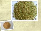 Qualidade superior do extrato de sementes de erva-doce em pó