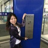 acier inoxydable de l'élévateur de l'aéroport Publice téléphone avec un bouton poussoir
