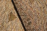 Dubai más barato tejido chenilla 280gsm (Fürth31143A)