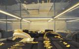 AC85-265V LED-Bildschirmanzeige-Beleuchtung-Schrank-Licht