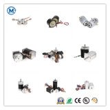24V 36V 48V 60V DC sin escobillas de alta calidad el motor eléctrico