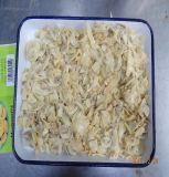 Frais de vente chaude de la récolte de qualité Premium de champignons en conserve de P&S