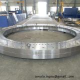 Roulement à rouleaux, roulement à rouleaux croisés, Industrical Robot, Sx011814