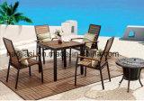 /Rattan ao ar livre/cadeira & tabela da mobília de Polywood mobília do jardim/pátio/hotel ajustou-se (HS 3002C& HS 7108DT)