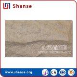 Tuiles extérieures normales de pierre de champignon de couche d'assurance qualité