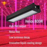 Full Spectrum 800W/Veg Bloom interruptores do painel de LED de luz crescer