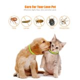 Chien Collier Anti Flea & Tick ravageur insectifuge pendentif en caoutchouc avec formule naturelle pour les chiens et chiots, totalement ajustable, tue Repousse les moustiques, les tiques