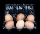 Embalagem de plástico se biodegradar 6 Ovos Tabuleiro de suporte de caixa de porta-contentores Clamshell transparente
